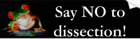 Say No to Dissection